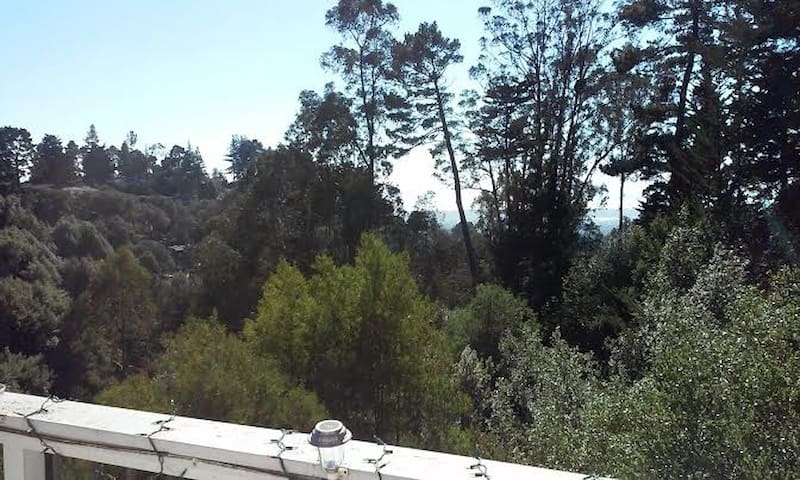 Lovely Oakland Hills Inlaw - Oakland