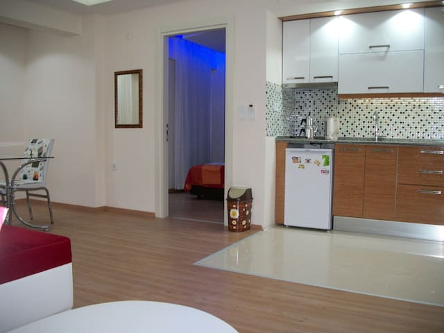 Luxuary Apartment in Downtown Izmir