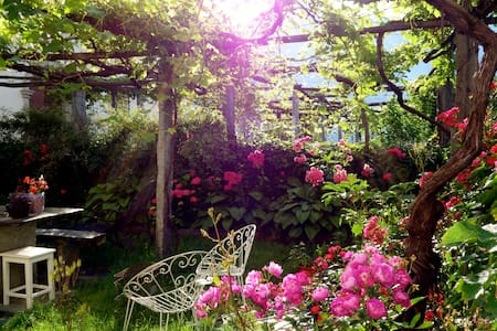 A magical location among vineyards - Pello - Bed & Breakfast