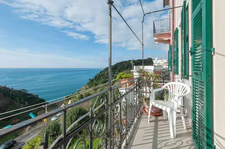 beautiful sweeping view, peaceful  - Corniglia - Appartement