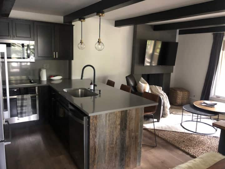 Aspen Core condo. Walk to ski runs and restaurants