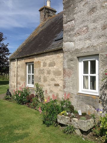 Maw's Cottage - Dornoch - Другое