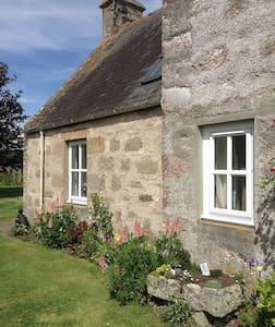 Maw's Cottage - Dornoch - อื่น ๆ
