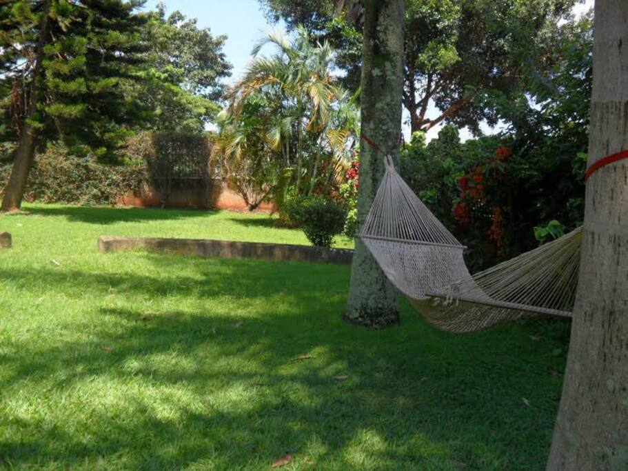 Sunny day outdoor hammock