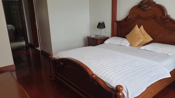 Luxurious Apartment in the Heart of Kololo