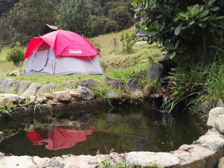 Campamento Ecologico y Senderimo en Cordillera
