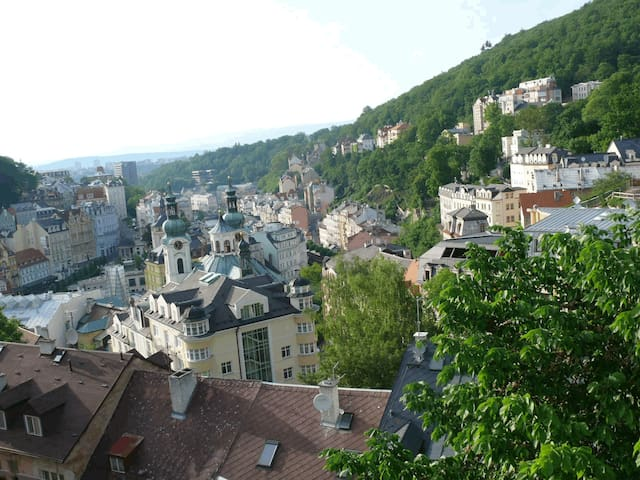 250 m to the springs and charming city views:)
