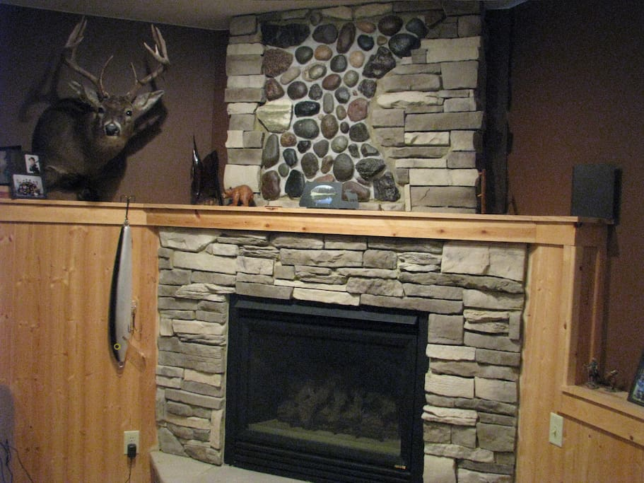 Fireplace in downstrairs living room