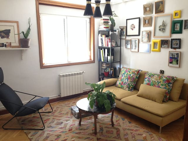 BIGROOM IN CENTRIC CHARMING FLAT - Valladolid - Ev