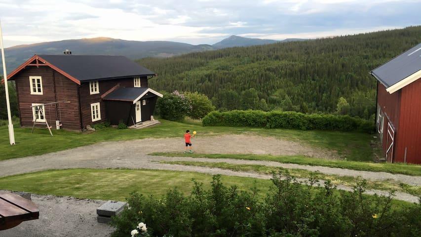 Sjarmerende gammelt tømmerhus på fjellgård