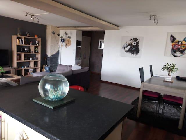 Antibes appartement avec vue