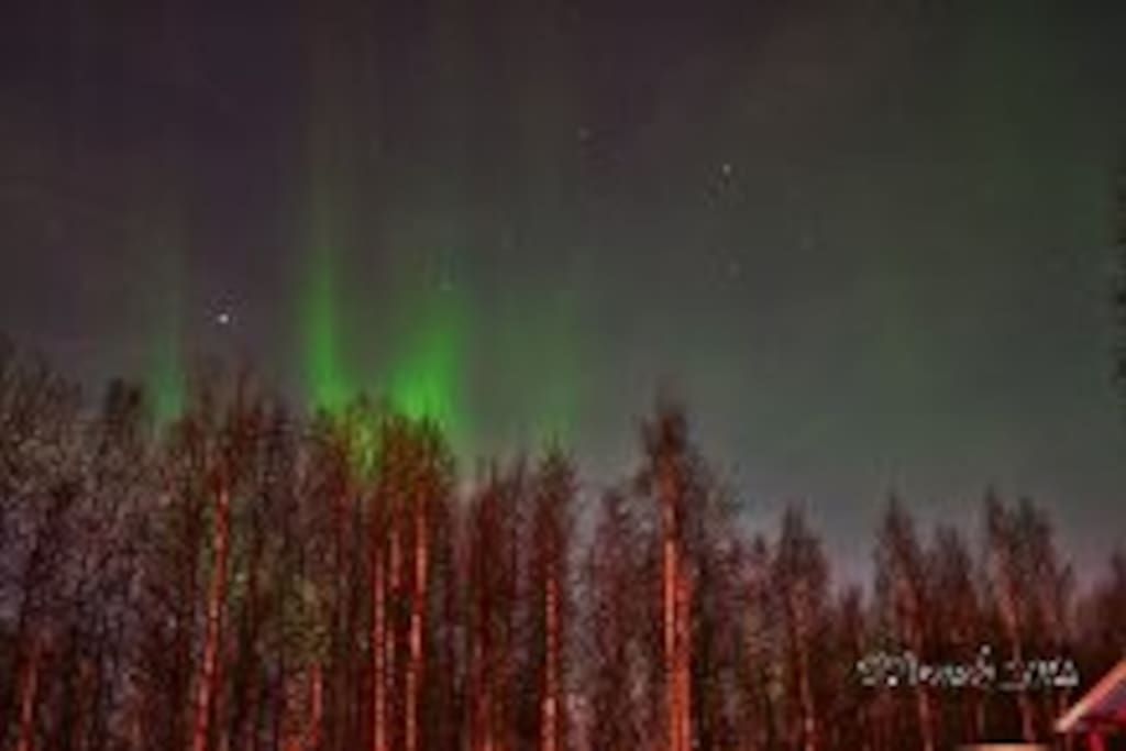 Northern Lights, backyard of house, photo taken by airbnb guest