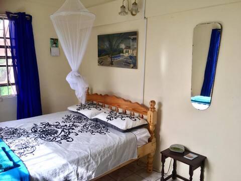 The Hummingbird Rooms - Ocean View Room