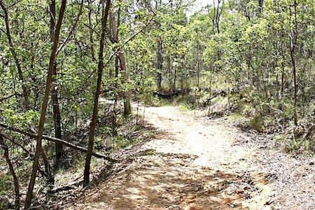 Large dble bush setting - Seven Hills