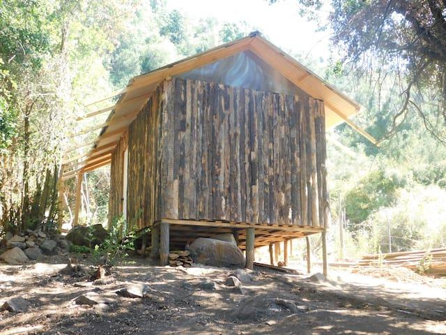 Cabaña para desconectarse rodeado de bosque nativo