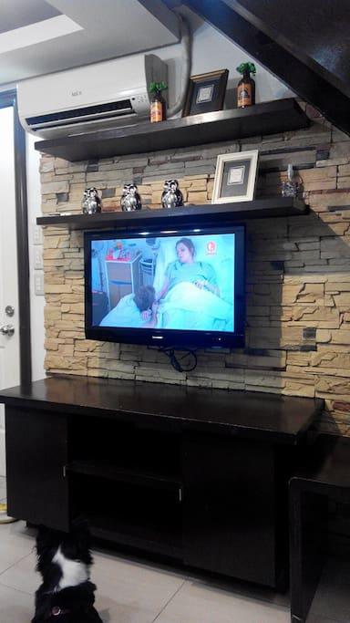 Living / TV Area