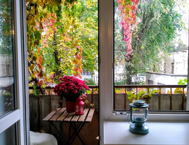 Cute balcony with fall leaves