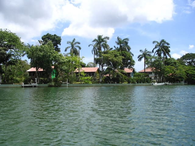 Cabana #4 Purple - Ladyville