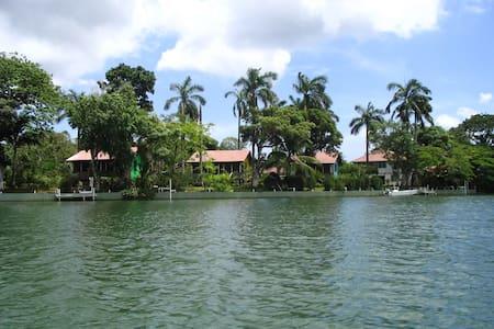 Cabana #4 Purple - Ladyville - Kisház
