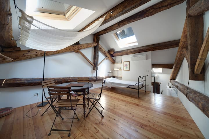 CHARMING STUDIO under the roofs - Piacenza