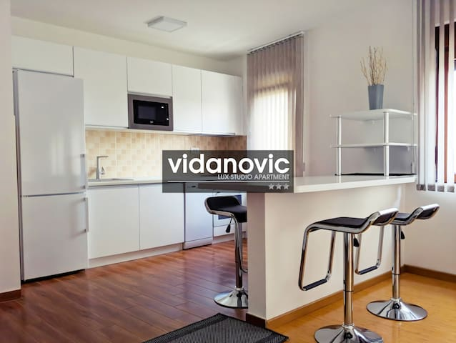 Lux Studio Apartment Vidanovic