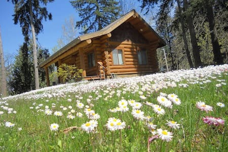"NEW! Cottontail Haven Lodge- your ""get-away"" place - Lake Tapps - Cabane"
