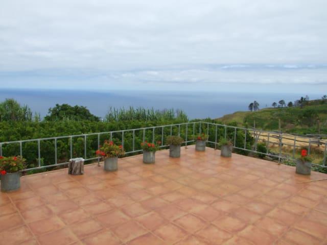 Ver van massa toerisme in wijngaard - Ponta Do Pargo - Huis