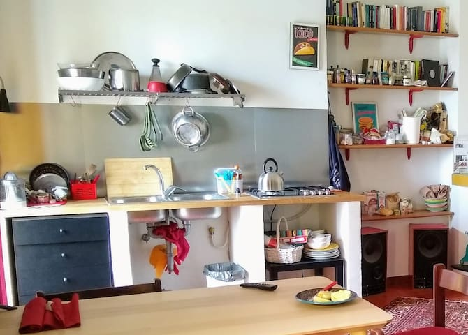 The new Kitchen in the living