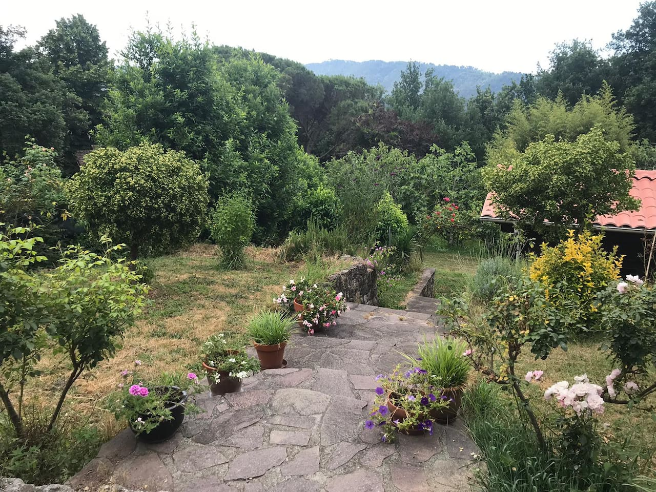 Over view of the garden