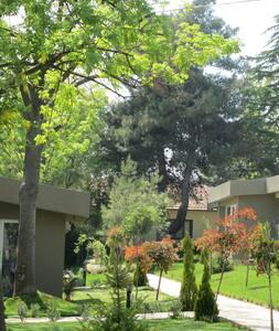 Living on a typical Turkish farm - Tekirdağ - House