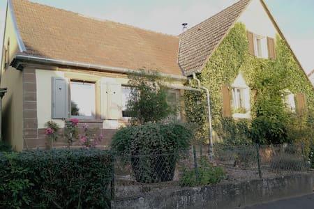 """""""Studio Schoenbourg"""" dans la région """"Alsace bossue - Schœnbourg"""