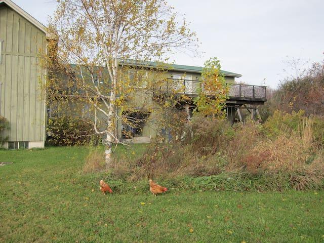 Rural Peace & Quiet Off-Grid home nr Georgian Bay