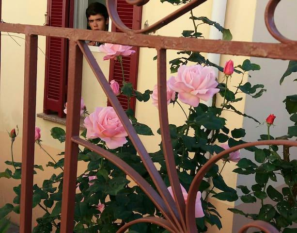 Chambre dans une jolie maison - Ajaccio - Casa