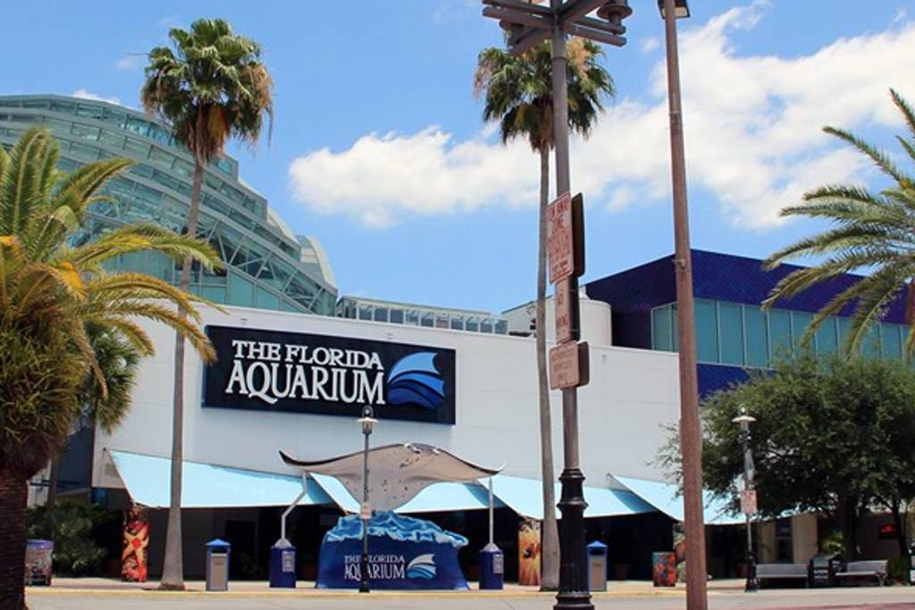 1 mile from the Florida Aquarium