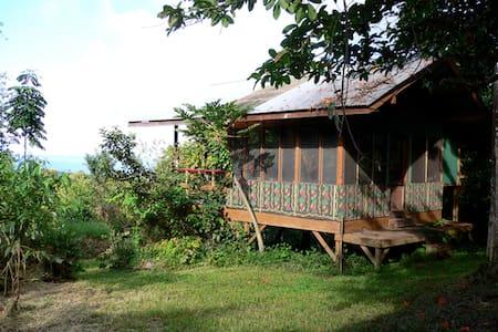 Tree Pavilion - a rustic Hana cabin