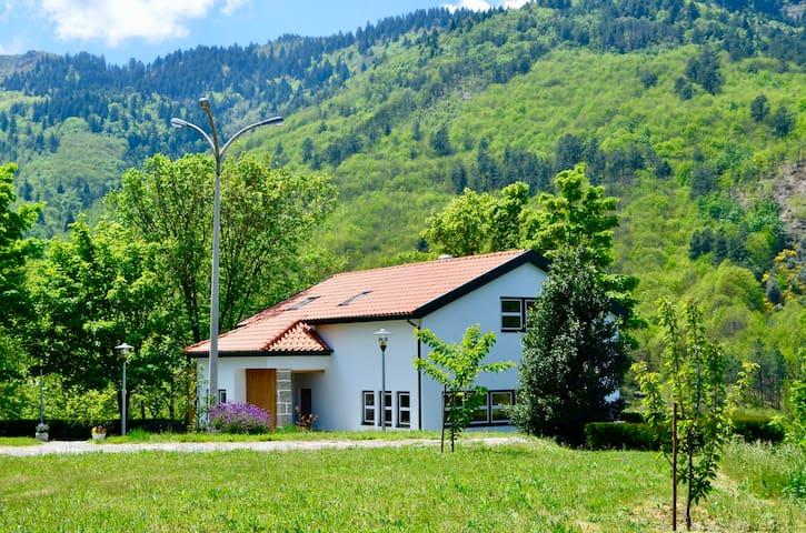 Solar da Castanha - Forest House (suite)