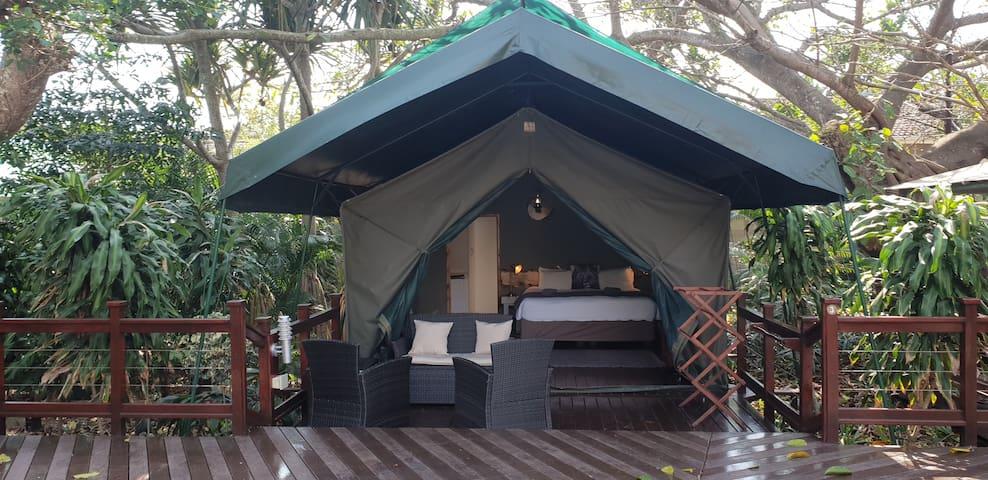 Luxury en-suite tent in town