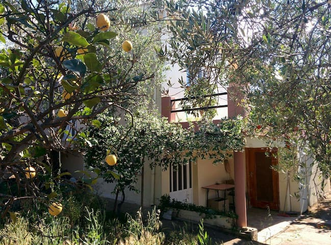 2-Level cottage in an olive grove