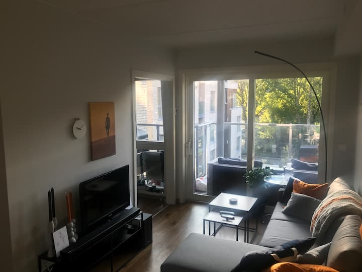 A brand new apartment in a nice neighborhood