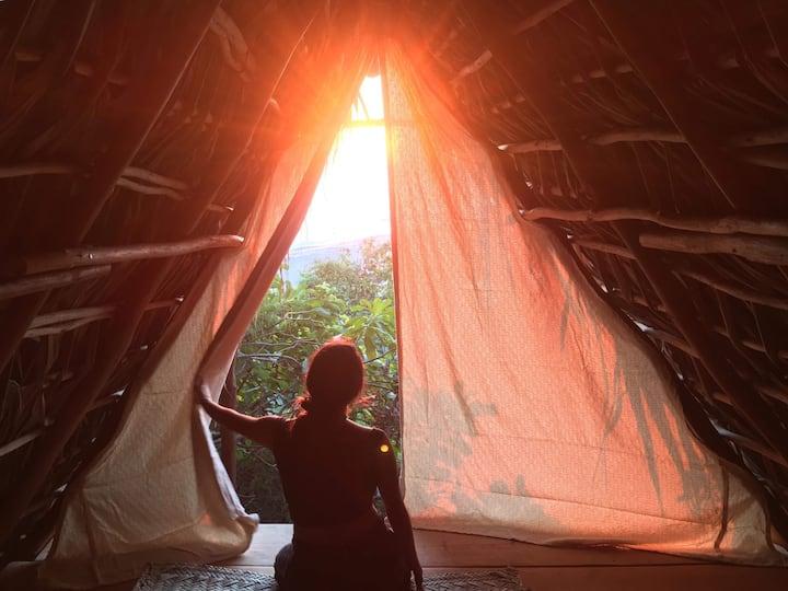 Proyecto Maloca Casita Coati