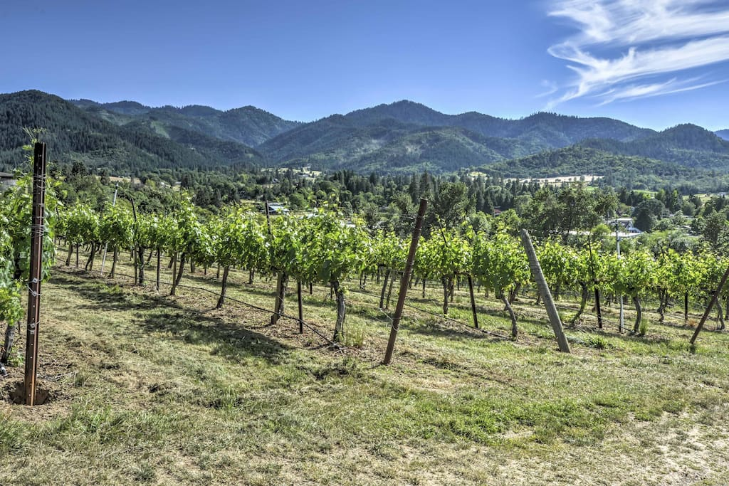 Located in the middle of a vineyard, this studio offers fantastic views of the mountains.