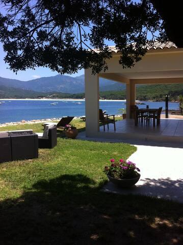 Villa standing Pieds dans l'eau - calcatoggio