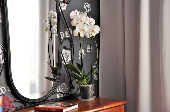 Апартаменты Светлана - Vyborg - Apartemen