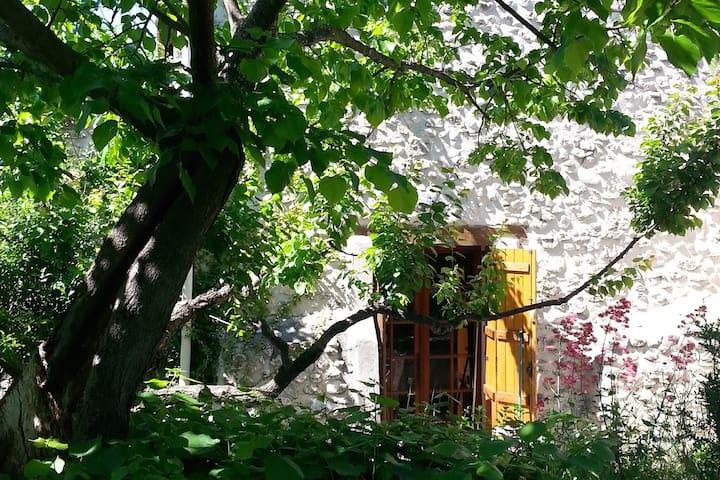 Gîte L'abricotier - Mas Rieu Fres