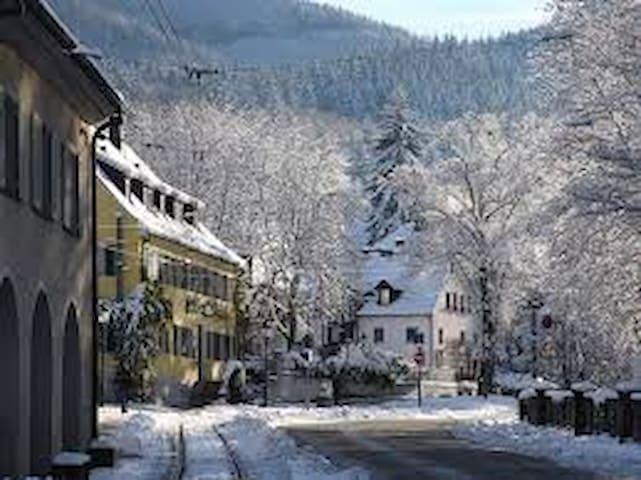beautiful, cosy flat in freiburg