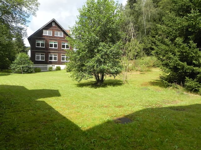 APARTMENT HARZ HOUSE (4 BDRM) - Altenau
