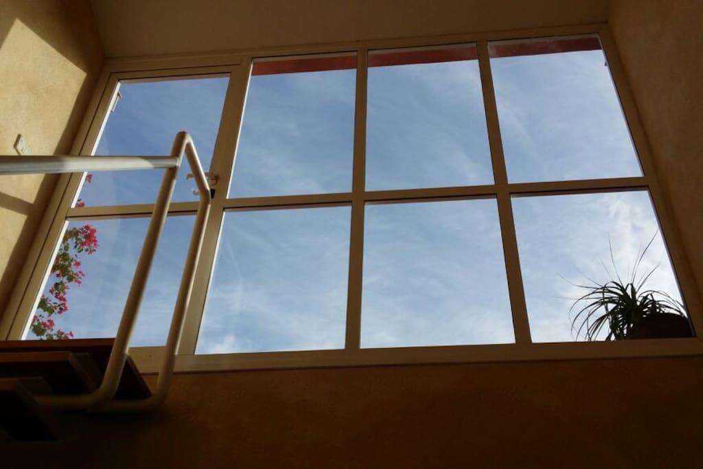 Habitacion x 1 en piso compartido en tenerife sur for Pisos embargados tenerife sur