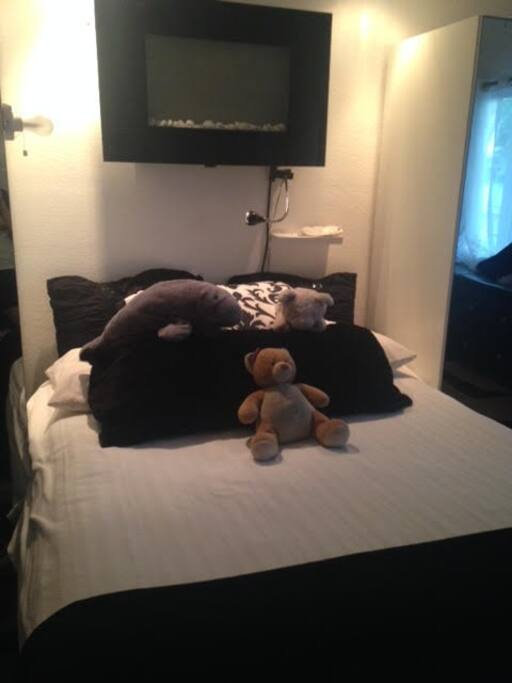 Master queen bed, electric fire place, lots of light in bedroom OR you can draw blackout curtains. Sorry, teddy bear not included!