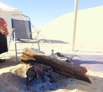 Qatari Desert Camp with Qataris  - Mesaieed - Alpstuga