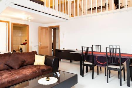 Spacious Duplex 2 apartments in 1 - Андерлехт